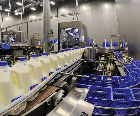 Dairy and Milk Industries